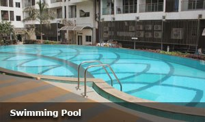 Mayfair Swimming Pool